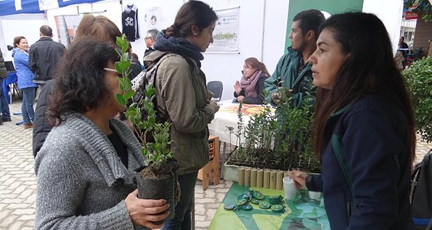 6a versión de la Feria de Prácticas Sustentables de Quilpué se llevó a cabo en la plaza Eugenio Rengifo.