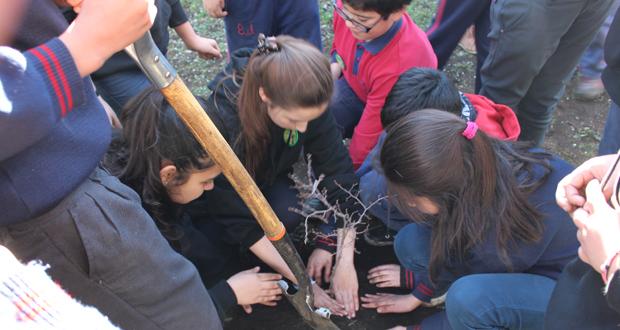 La iniciativa, enmarcada en el programa +árboles para Chile, consistió en una plantación de árboles nativos en el establecimiento educacional.