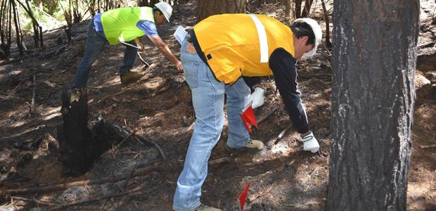 El curso fue dictado por los integrantes de la Brigada de Determinación de Causas de Incendios Forestales de CONAF Biobío.