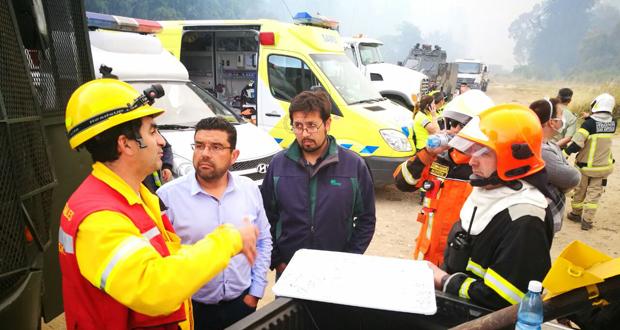En el lugar operan con CONAF brigadas forestales del Ejército; helicópteros gestionados a través de Onemi; Bomberos de San Antonio y Santo Domingo; y camiones aljibes municipales.