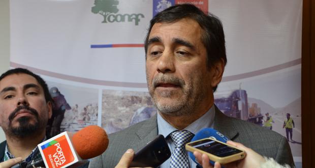 Aarón Cavieres, Director Ejecutivo de CONAF, precisó que las brigadas de determinación de causas se constituirán en las regiones de Valparaíso, Metropolitana, O'Higgins, Maule, Biobío y La Araucanía.