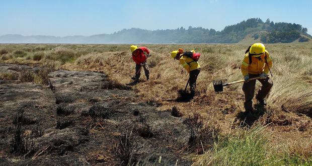 Desde su inicio, el incendio ha tenido un comportamiento variable; con áreas bajo control y otras con rebrote, lo que ha hecho difícil su contención.