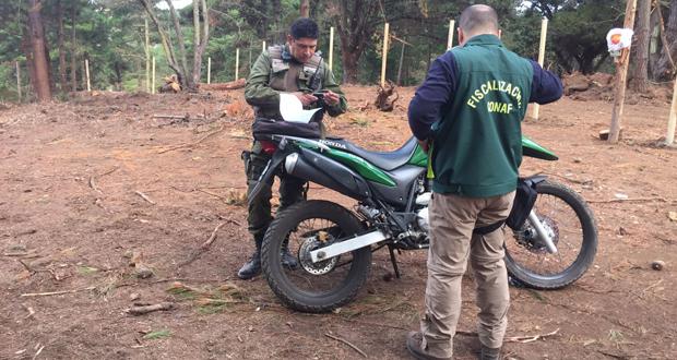 El jefe de la Sección de Fiscalización Forestal de CONAF, Marcelo Pérez, quien participó del procedimiento preventivo.