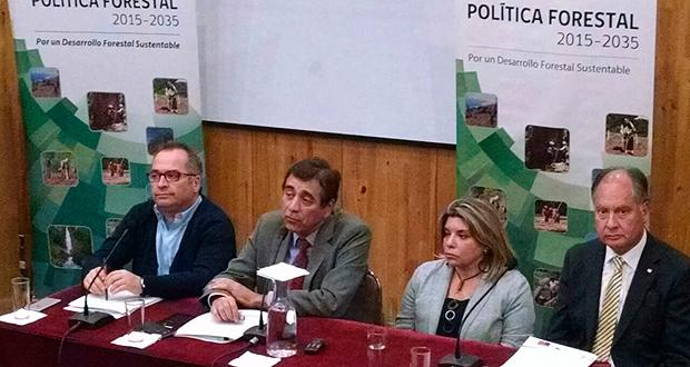 Decimoquinta sesión plenaria del Consejo de Política Forestal, efectuado en la Universidad de Talca.