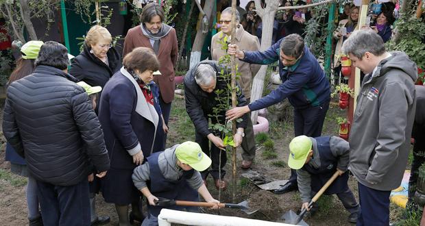 Presidenta Bachelet ingresó temática cambio climático en malla curricular.
