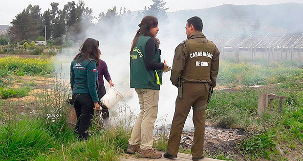 Personal de Carabineros detuvo esta semana a cinco personas adultas por ejecutar quemas de residuos agrícolas.