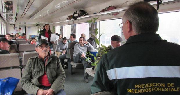 Al finalizar el recorrido, el equipo entregó treinta árboles nativos a los pasajeros que contestaron correctamente las preguntas sobre recomendaciones para prevenir incendios forestales.