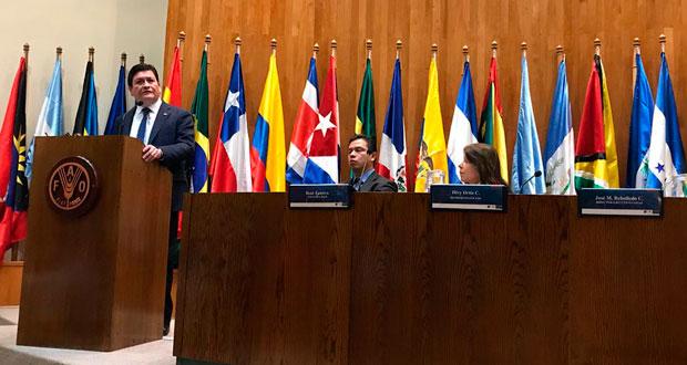 La Iniciativa 20x20 promueve entre los países el cambio de la dinámica de la degradación de la tierra en América Latina y el Caribe, con el fin de restaurar 20 millones de hectáreas al año 2020.